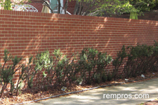 solid-brick-privacy-fence